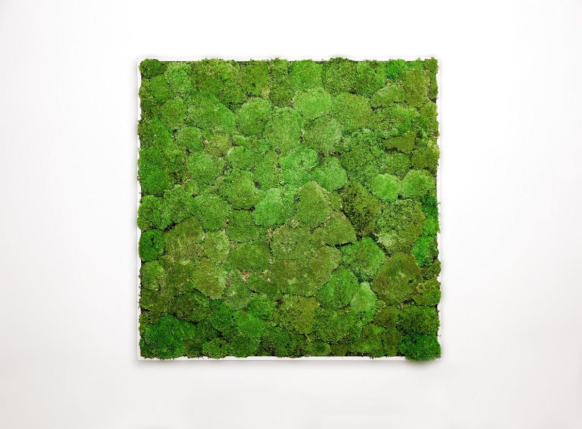 GREENIN hill | 80x120 cm