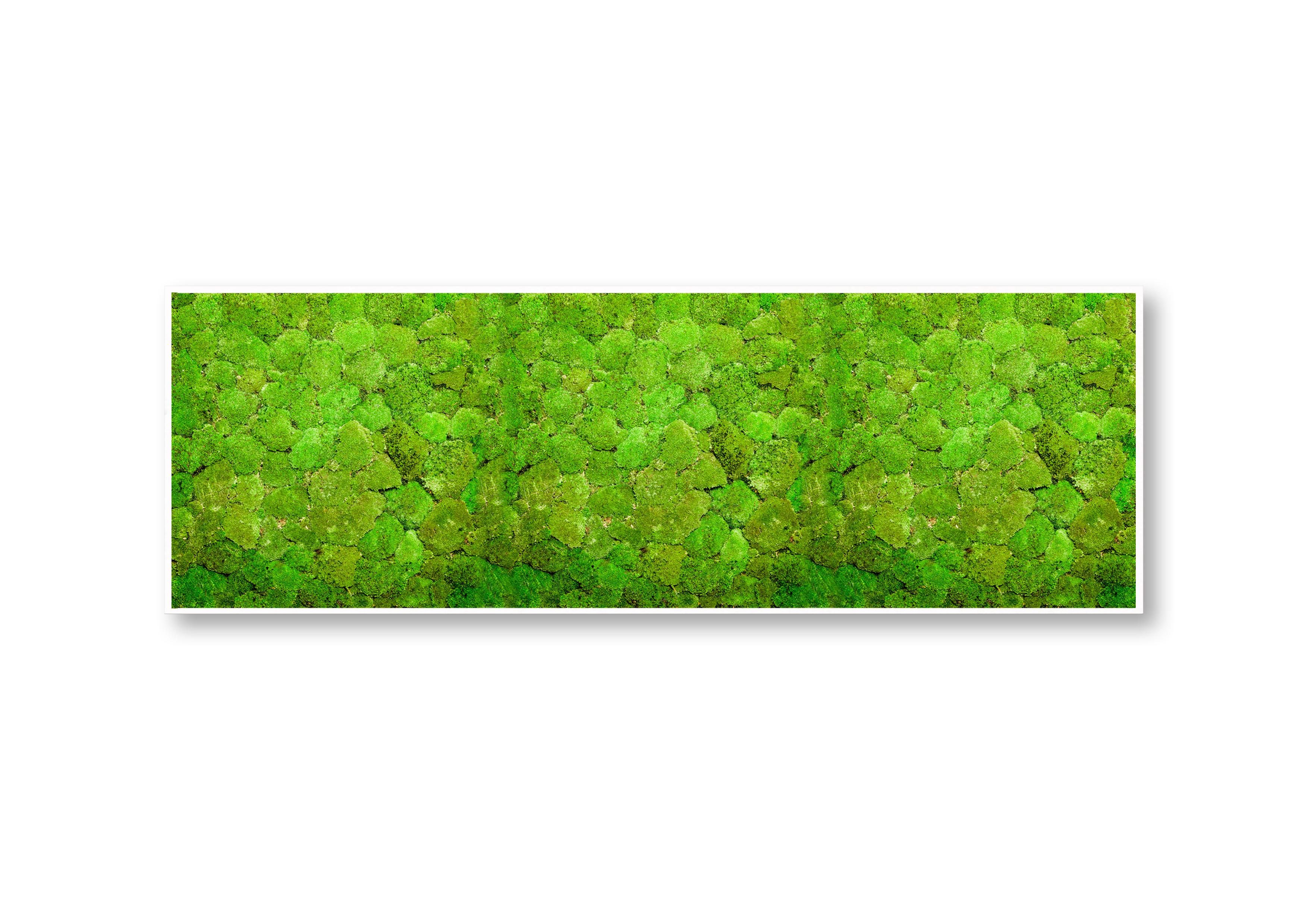 GREENIN hill   40x120 cm