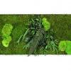 machovy-obraz-greenin-leafy-40x80