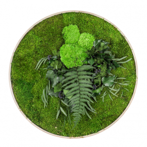 machovy-obraz-kruh-greenin-leafy-60